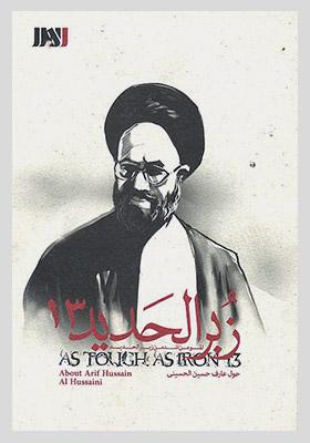 زبر الحدید جلد 13 - عارف حسین الحسینی